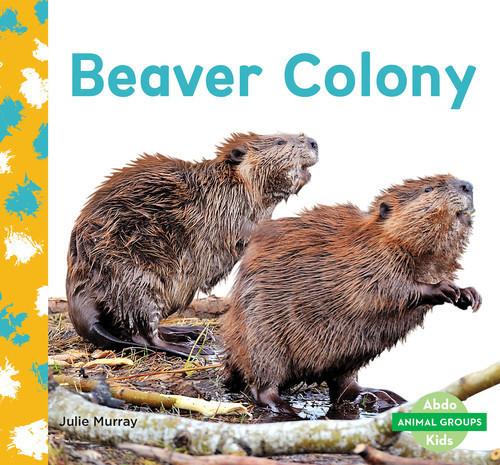Cover: Beaver Colony