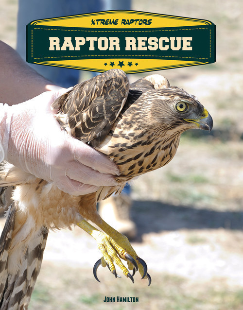 Cover: Raptor Rescue