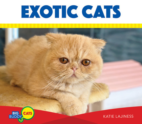 Cover: Exotic Cats