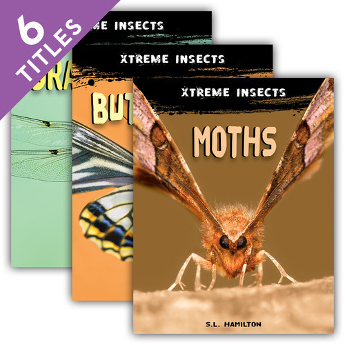 Cover: Xtreme Insects Set 2