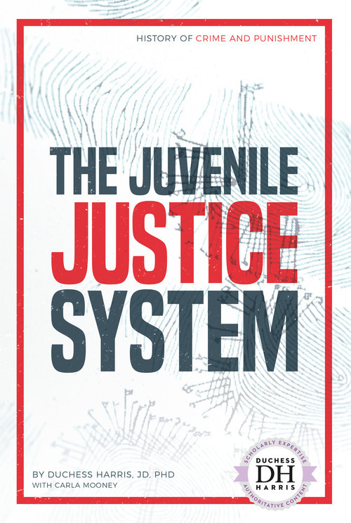 Cover: The Juvenile Justice System