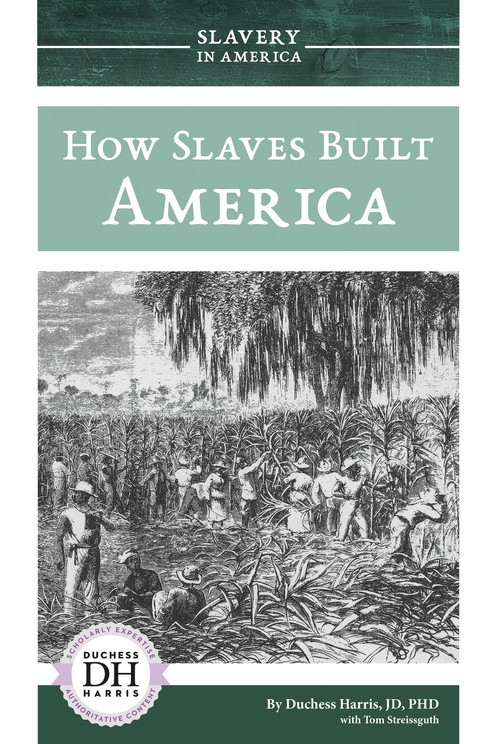 Cover: How Slaves Built America