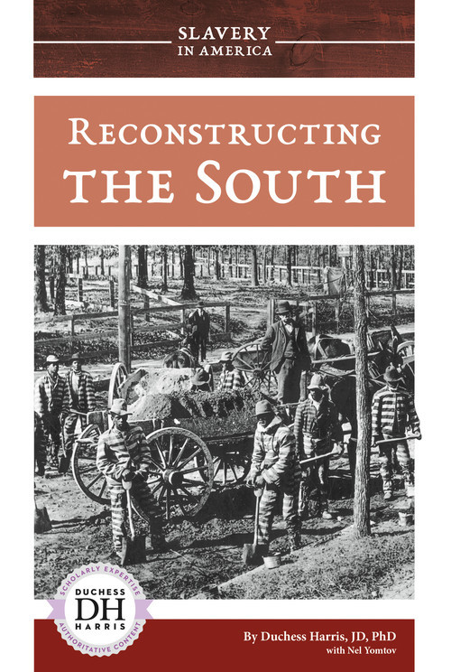 Cover: Reconstructing the South