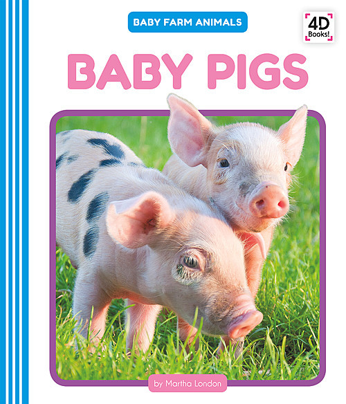 Cover: Baby Pigs