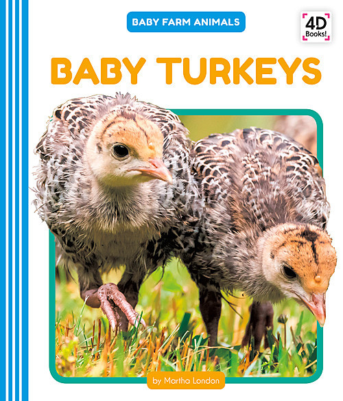 Cover: Baby Turkeys