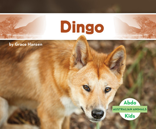 Cover: Dingo