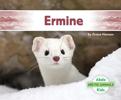Cover: Ermine