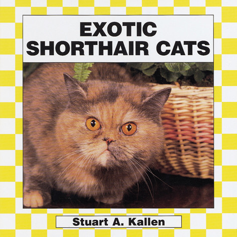 Cover: Exotic Shorthair