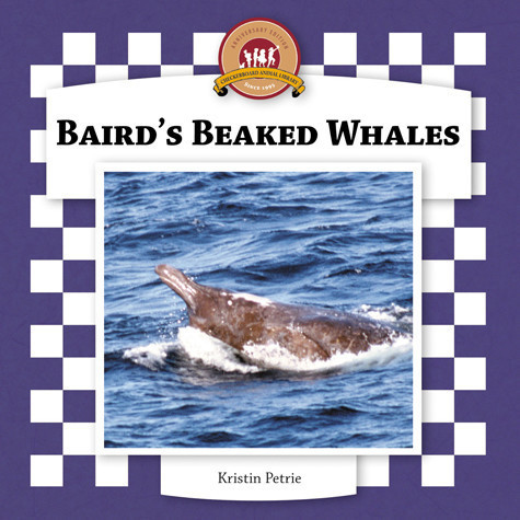 Cover: Baird's Beaked Whales