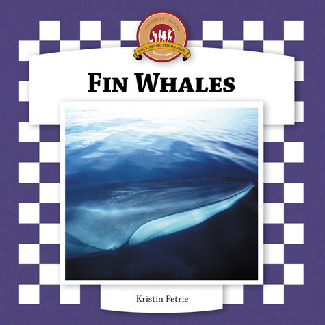 Cover: Fin Whales
