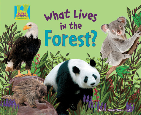 Cover: What Lives in the Forest?