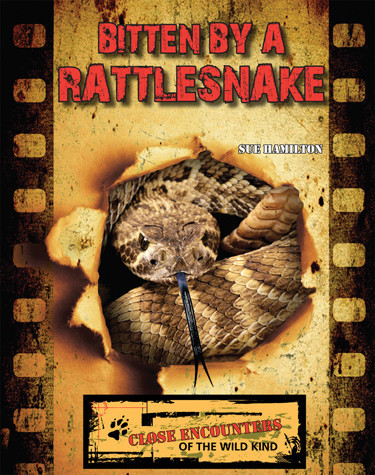 Cover: Bitten by a Rattlesnake