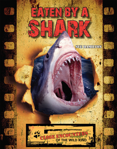 Cover: Eaten by a Shark