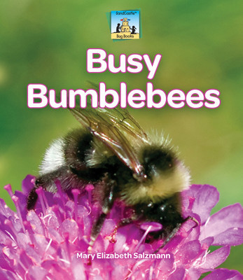 Cover: Busy Bumblebees