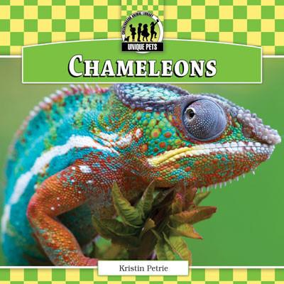 Cover: Chameleons