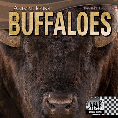 Cover: Buffaloes