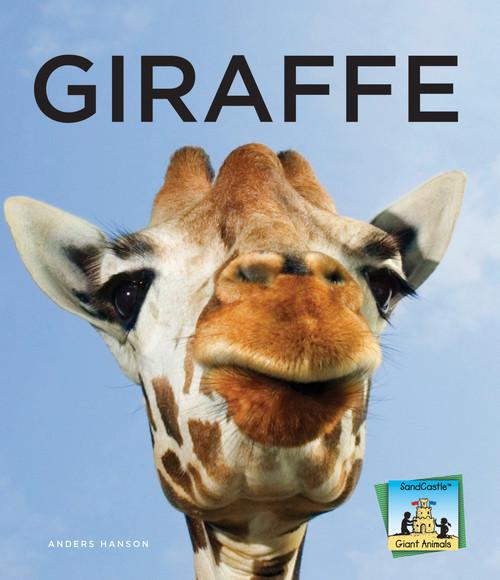 Cover: Giraffe