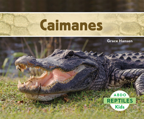 Cover: Caimanes