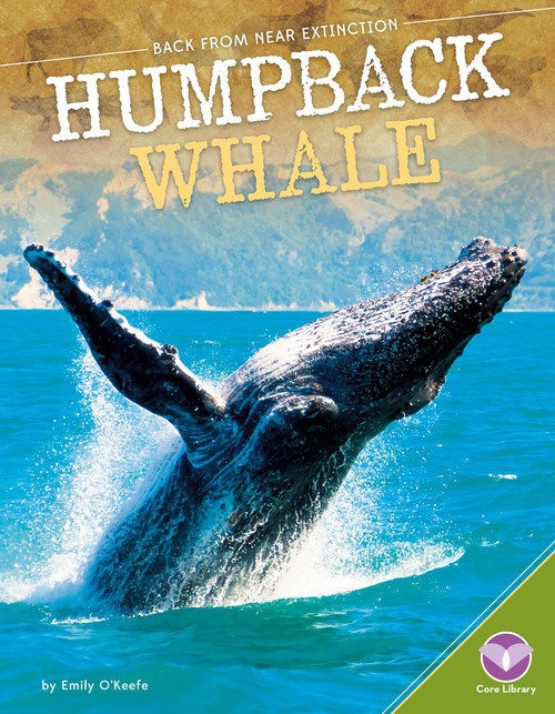 Cover: Humpback Whale