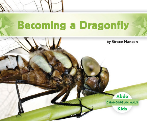 Cover: Becoming a Dragonfly