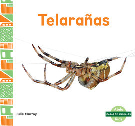 Cover: Telarañas (Webs)
