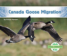 Cover: Canada Goose Migration