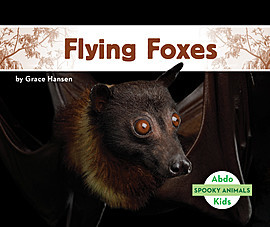 Cover: Flying Foxes