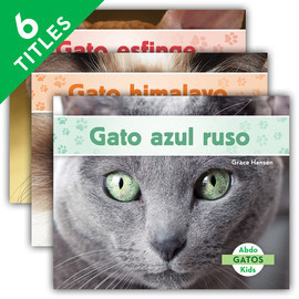 Cover: Gatos (Cats Set 2)