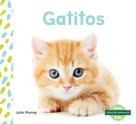Cover: Gatitos