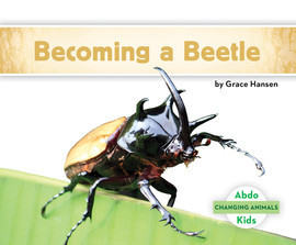Cover: Becoming a Beetle