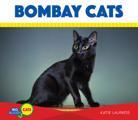 Cover: Bombay Cats