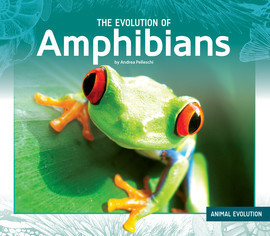 Cover: The Evolution of Amphibians