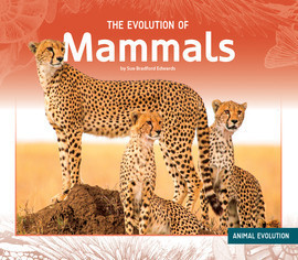 Cover: The Evolution of Mammals