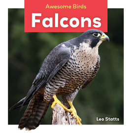 Cover: Falcons