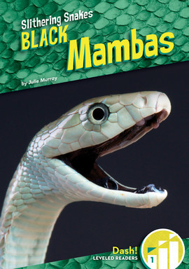 Cover: Black Mambas