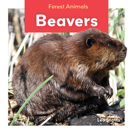 Cover: Beavers