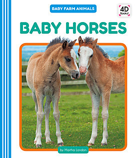 Cover: Baby Horses
