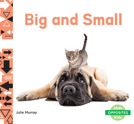 Cover: Big and Small