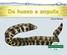 Cover: De huevo a anguila