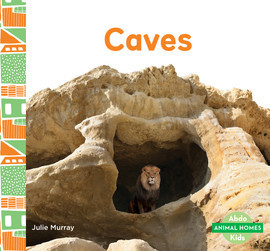 Cover: Caves