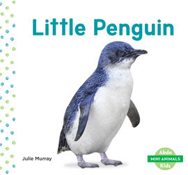 Cover: Little Penguin