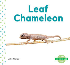 Cover: Leaf Chameleon
