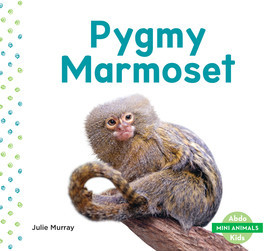 Cover: Pygmy Marmoset