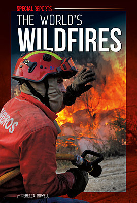 Cover: The World's Wildfires