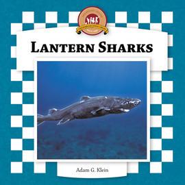 Cover: Lantern Sharks