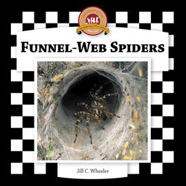 Cover: Funnel-Web Spiders