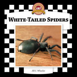 Cover: White-Tailed Spiders