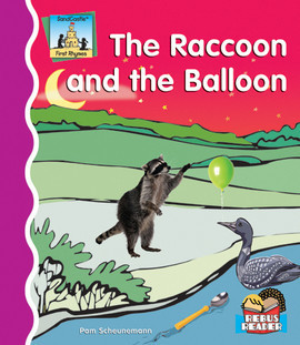 Cover: Raccoon And The Balloon
