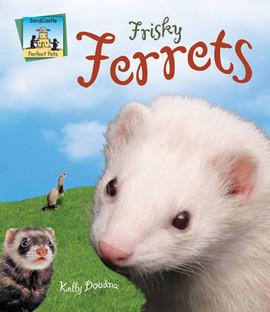 Cover: Frisky Ferrets