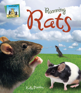 Cover: Running Rats